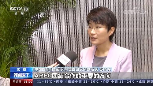亞太經合組織領導人非正式會議:中方為亞太經濟復蘇注入新思路與新動力