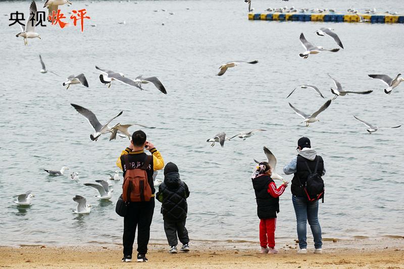 资阳seo_【央视快评】起劲建设人与自然协调共生的现代化插图2