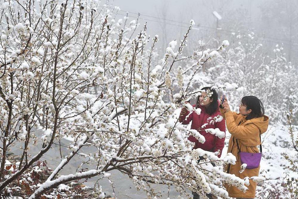 湖北襄阳元宵节迎春雪