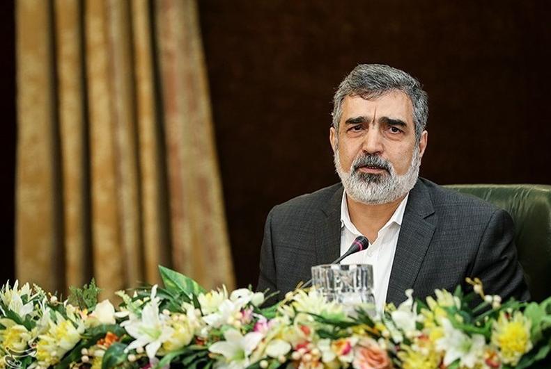 伊朗原子能组织发言人:伊朗可能在8个月内