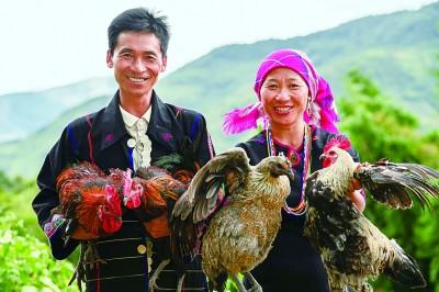 看云南,生物多样性、文化多元性之花尽情绽放
