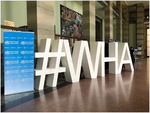 """世界卫生大会今天开幕,台媒:疫情小组调查报告里写的是""""中国台湾""""插图"""
