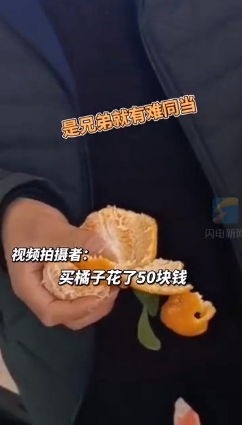 机场4名男子半小时吃完60斤橘子!原因竟是……