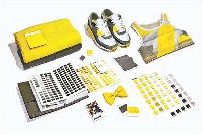 2021年度双流行色:亮丽黄和极致灰插图