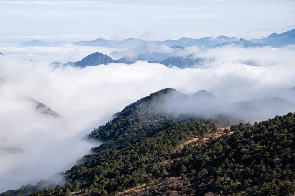 武夷山国家公园,原生态的森林氧吧
