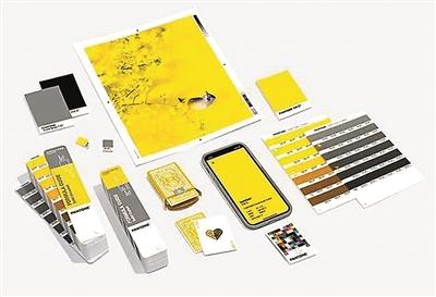 2021年度双流行色:亮丽黄和极致灰插图1