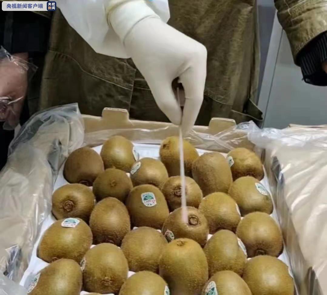 涉疫猕猴桃流入!黑龙江一地封存385.59公斤 核酸采样全部为阴性
