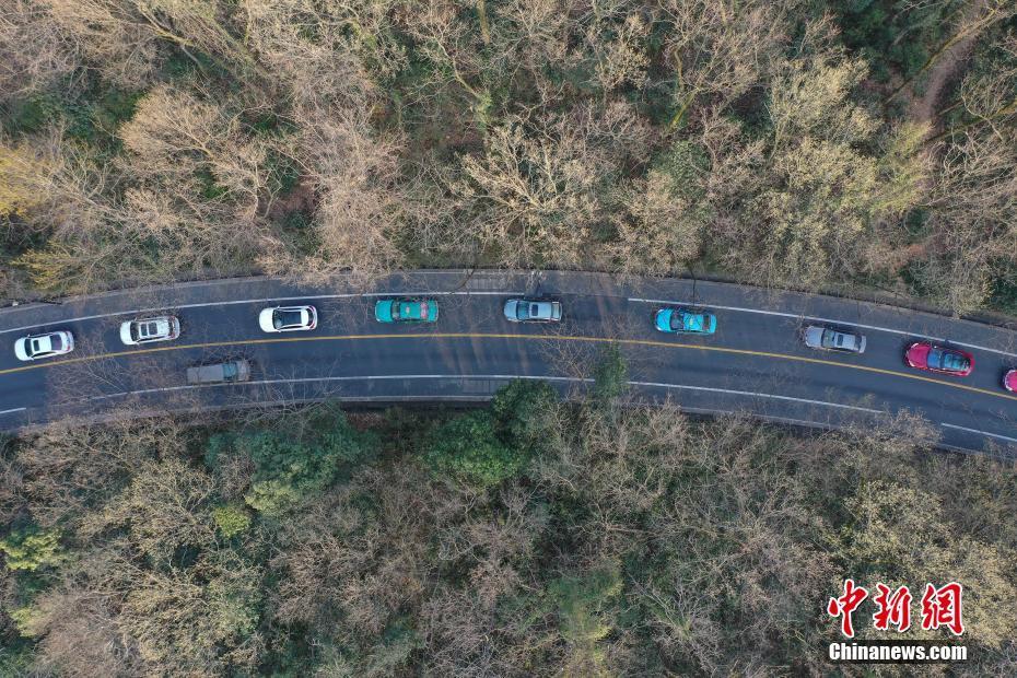 浙江旱情持续 多地发布森林火险气象预警