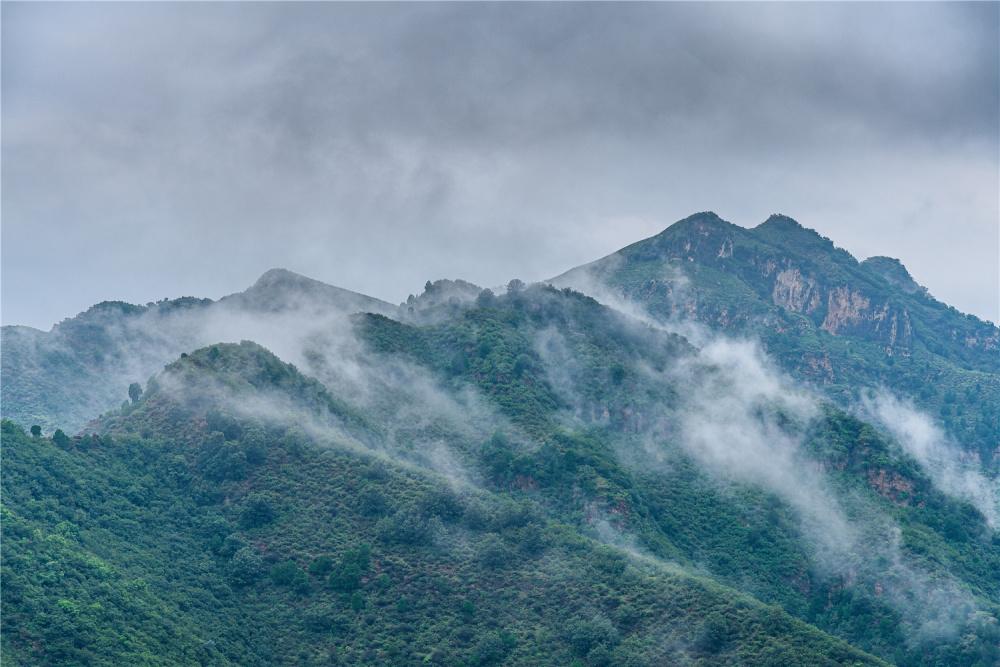 北京房山森水村:雨雾缭绕,云海十分壮观-第1张图片-凉面论坛_不只是免费发布招聘求职信息_致力成为生意人优选的分类信息网
