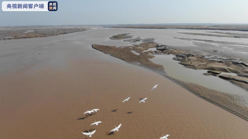 河南省制定实施黄河流域水污染物排放标准 改善流域水生态环境质量