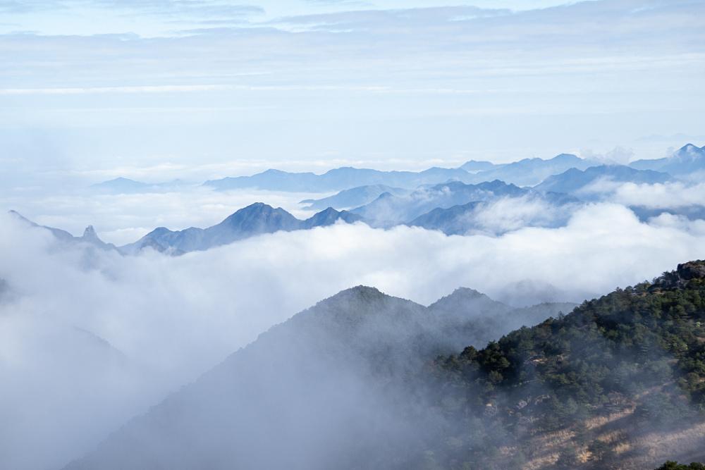 武夷山国家公园,原生态的森林氧吧-第3张图片-凉面论坛_不只是免费发布招聘求职信息_致力成为生意人优选的分类信息网