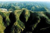 近20年中国新增植被面积约占全球总量25%