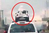 墨西哥两儿童坐车顶玩具车中 汽车雨中行驶