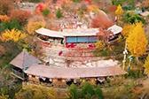 北京红叶观赏地:坡峰岭