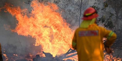 图一周摘取 澳大利亚消防员在森林火点灭火