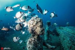 水下博物馆潜水观展