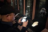 國博館藏甲骨首次大規模展示 交互設計讓國寶更好玩