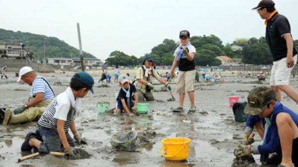 日本天气晴好儿童聚集海滩挖蛤蜊