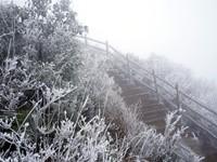 粤北金子山迎冰挂雾凇