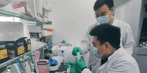 英媒:疫情给中国科技企业带来巨大的市场机遇