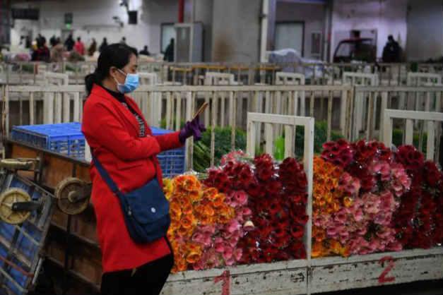 昆明斗南市场恢复鲜切花对手交易