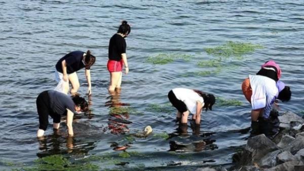 哈尔滨夏味十足 民众江边亲水享清凉