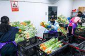 武汉全力保障蔬菜市场供应