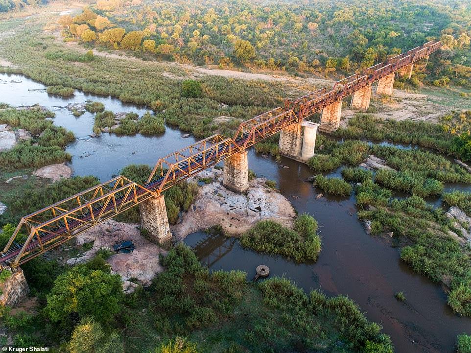 南非野生动物园吸引游客创新招,改造百年蒸汽火车成酒店