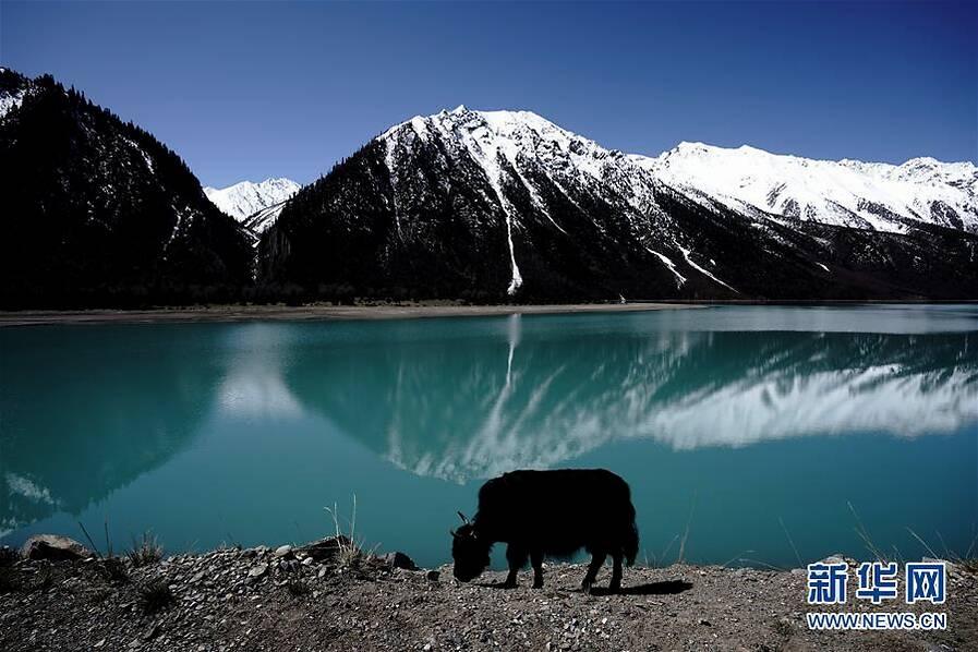 西藏美丽然乌湖