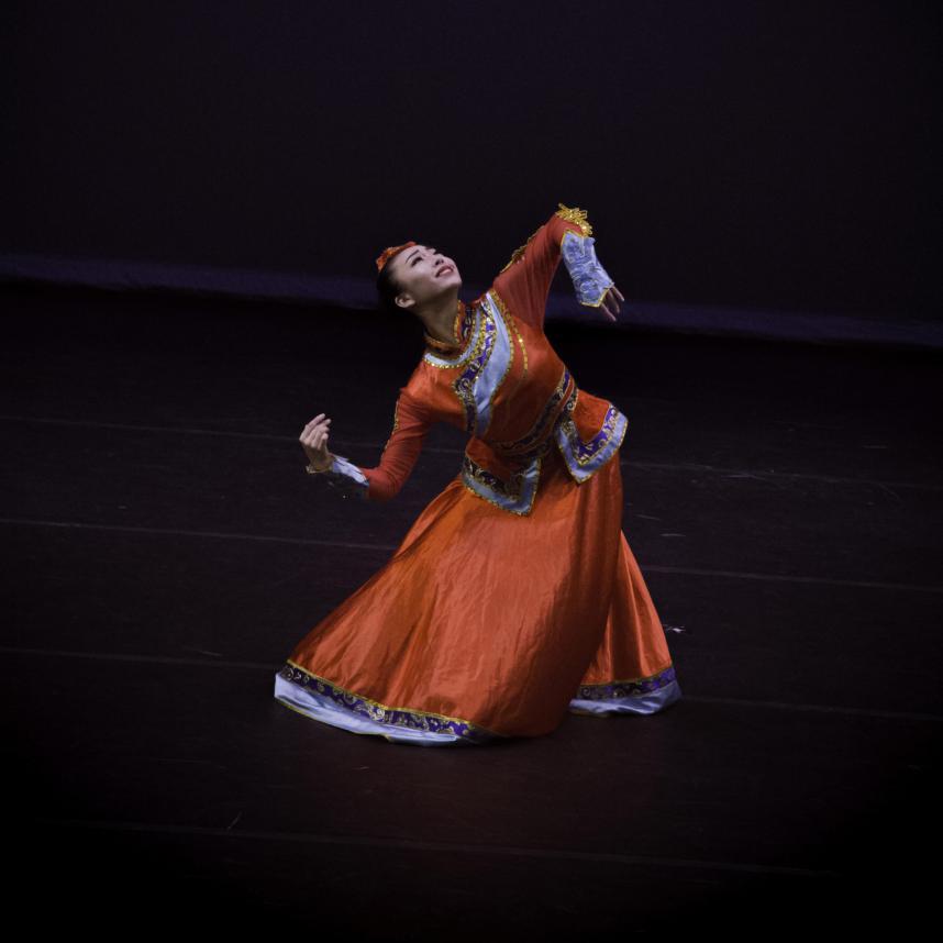 """""""舞林缤纷·北美舞蹈联盟公益课""""将在线举行"""