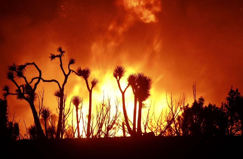 美国加州山火加剧 逾10万人紧要疏散
