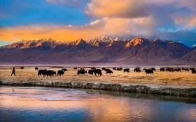 南疆特色亮起来游客自然来
