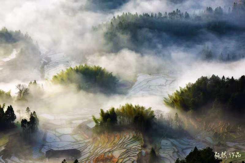云游中国|在湖南紫鹊界感受绵延千年的诗意