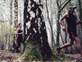 即使每周跑步不足50分钟 啊能够落早逝风险27%