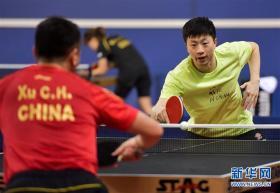 中国国家乒乓球队在多哈备战