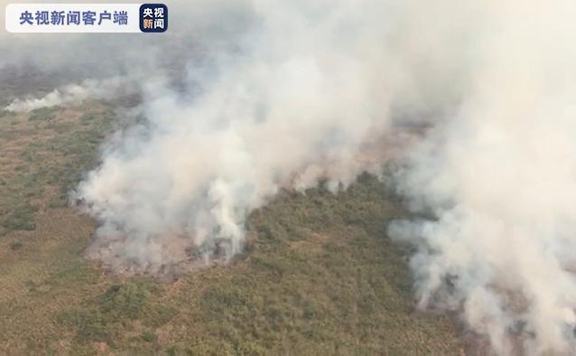嘉兴兼职网:巴西大火燃烧10天仍未熄灭 偏激面积达4万公顷 第1张