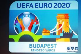 欧足联确认欧锦赛将推迟举行