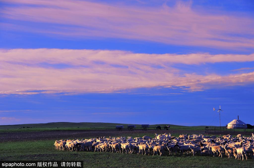 内蒙古新巴尔虎右旗绚丽风光