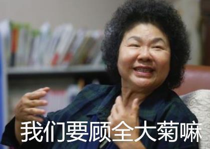 """民进党只顾""""大菊"""",心无大局"""