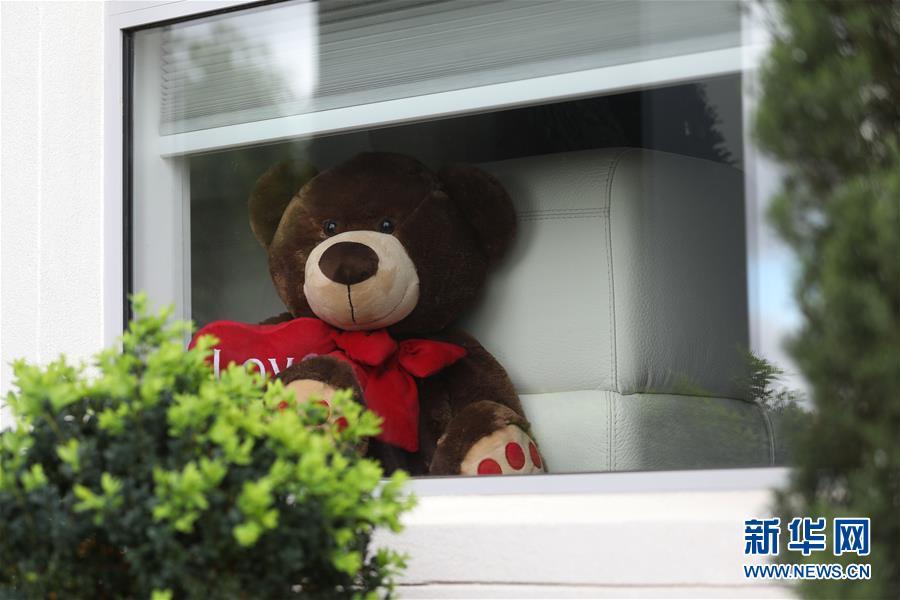 """抗疫中的暖心瞬间——澳大利亚的""""偶遇小熊""""接力"""