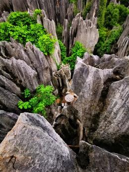世界自然遗产:云南石林,亿万年形成的地质奇观