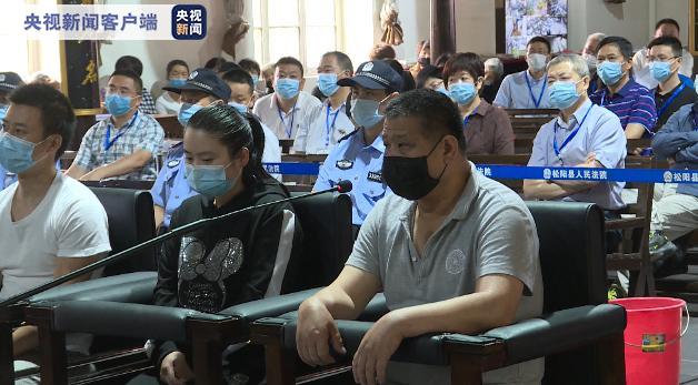 浙江松阳公开审理破坏野生动物资源案件 开出首张从业禁止令