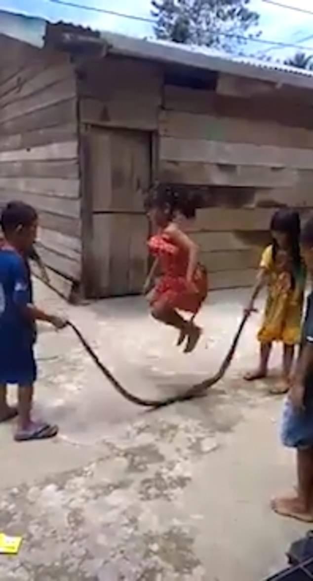 越南几名孩童用死蛇跳绳又闹又笑毫不畏惧(视频)