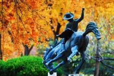 丰台区推出5条精品旅游线路邀您秋季畅游丰台