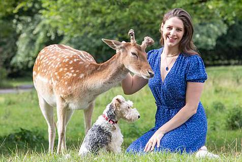 童话!英小鹿被人类救助 长大后定期回来看望恩人