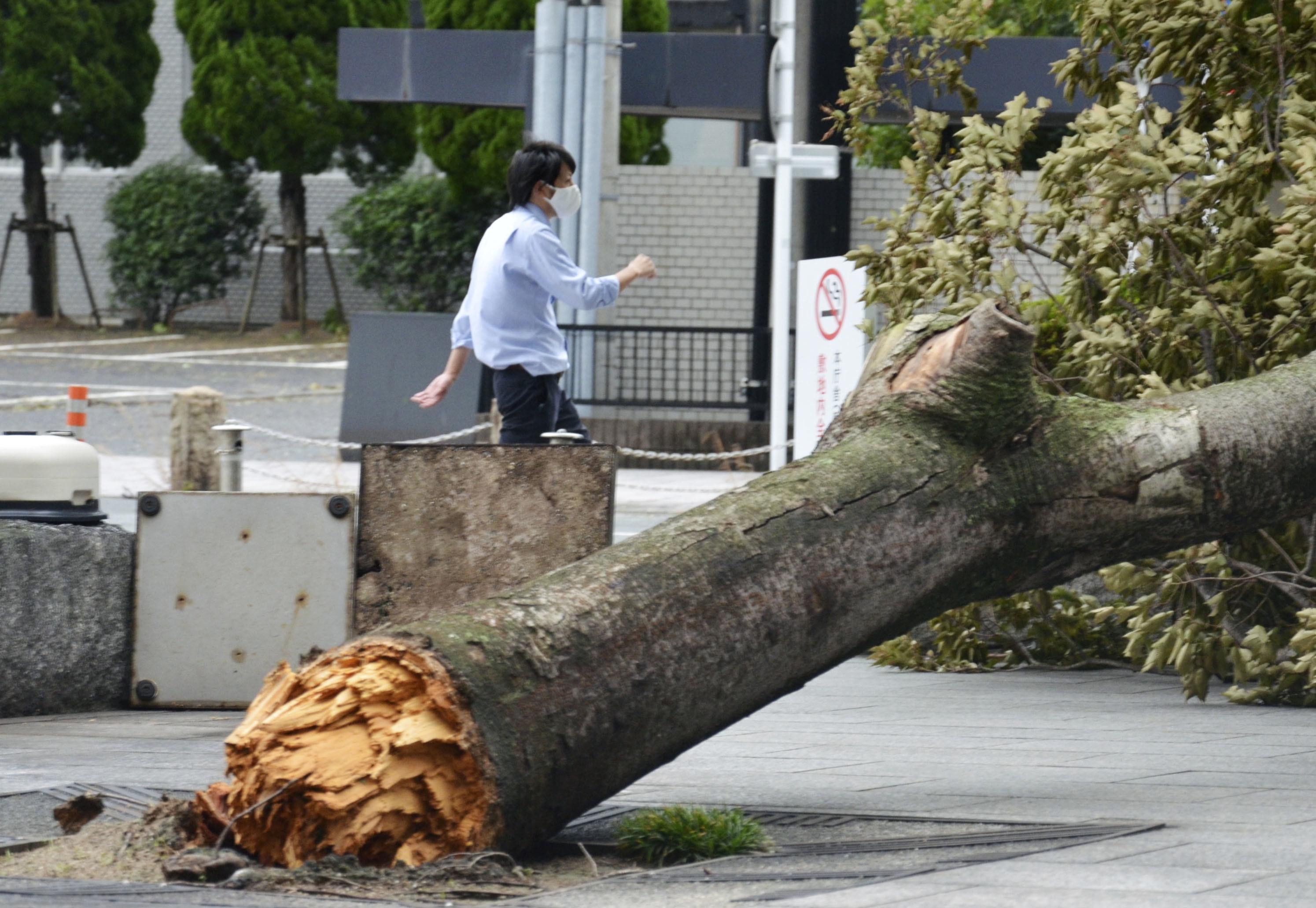 """皇冠app怎么下载:10号台风""""海神""""致日本至少52人受伤 第2张"""