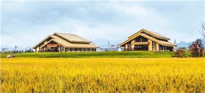 走进世界稻作文化起源地