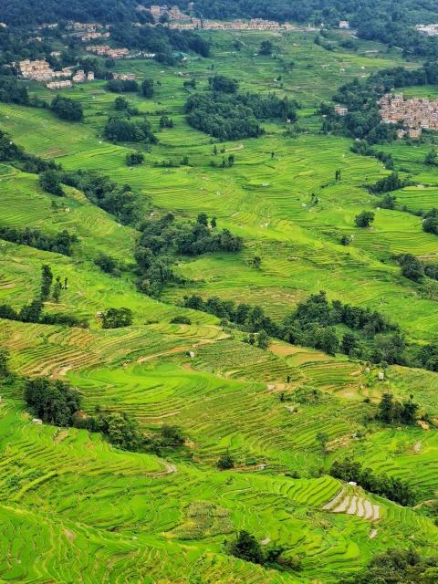 世界文化遗产:红河哈尼梯田,世界罕见的农业文化景观