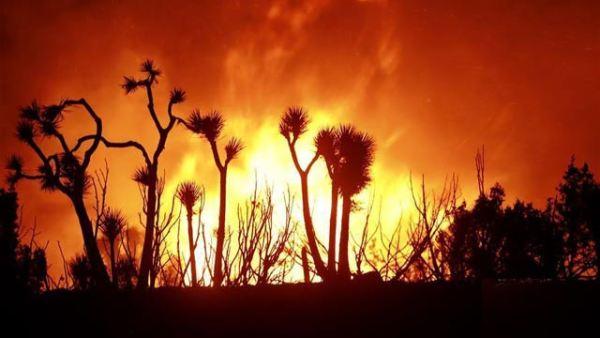 """""""山猫""""山火继续在美国洛杉矶县山区蔓延"""