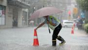 """""""乘风破浪""""之后,上海靠什么应对下一次暴雨?"""